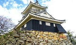 NHK『おんな城主 直虎』の家系図を見て感動がよみがえる!